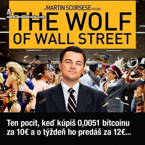 Ten pocit, keď kúpiš 0,0051 bitcoinu za 10€ a o týždeň ho predáš za 12€...