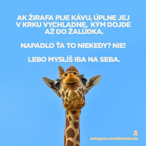 Žirafa pije kávu a ty si egoista, aby si vedel!