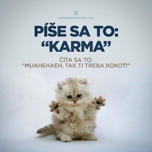 """Píše sa to """"karma"""" , číta sa to """"muahaheaheha, tak ti treba, kokot!"""""""