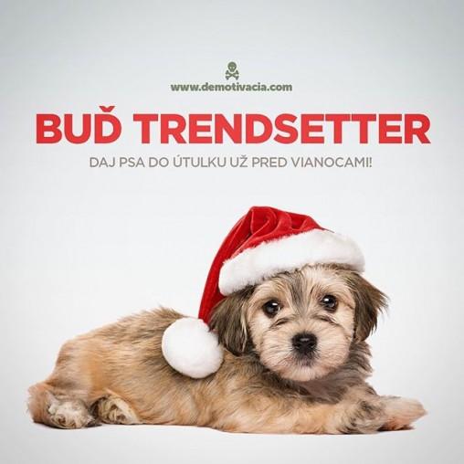 Buď trendsetter! Daj psa do útulku už pred vianocami!