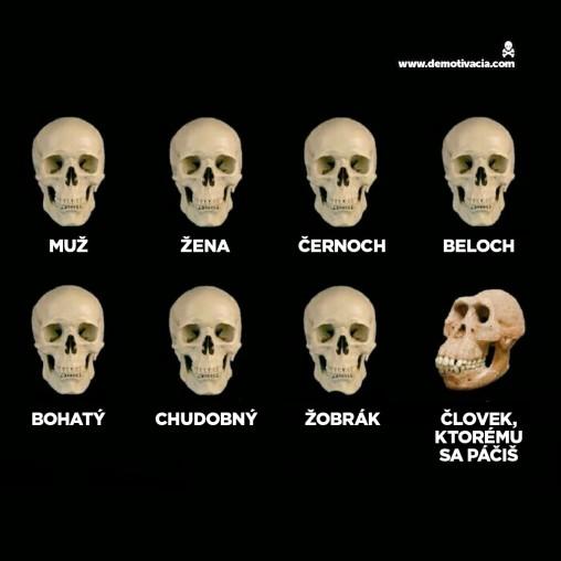 Demotivačná evolúcia
